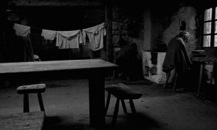 the turin horse3