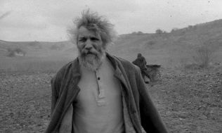 the turin horse5